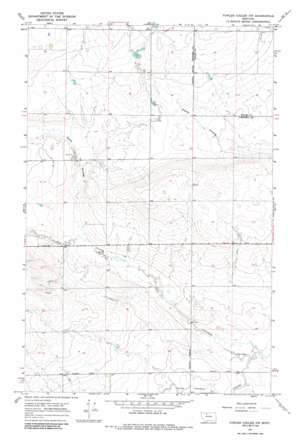 Fowler Coulee Nw topo map
