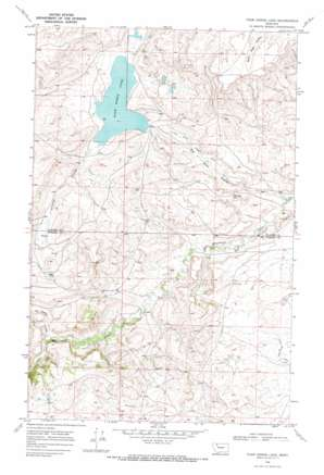 Four Horns Lake topo map