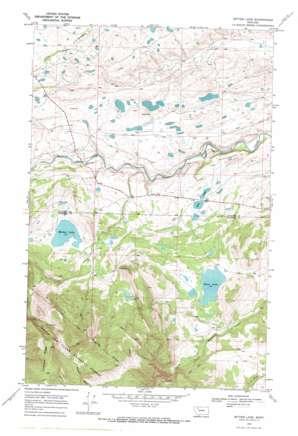 Mitten Lake topo map