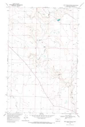 Dead Indian Spring topo map