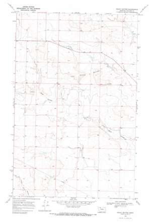 Rocky Buttes topo map
