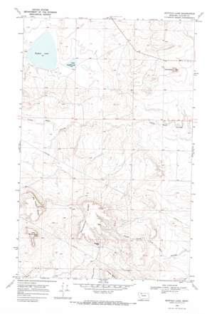 Buffalo Lake topo map