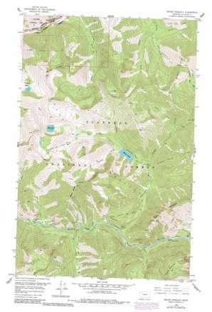 Mount Bradley topo map