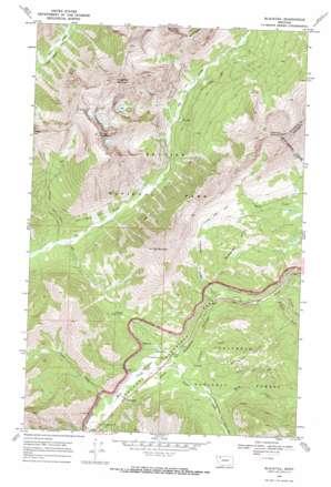 Blacktail topo map