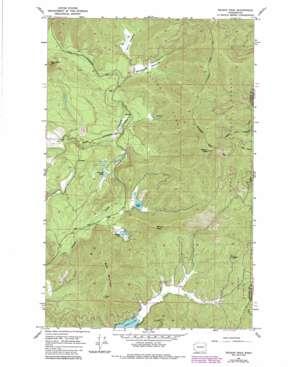Nelson Peak topo map
