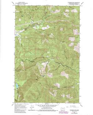 Goddards Peak topo map