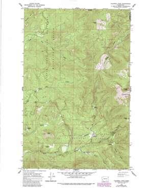 Calispell Peak USGS topographic map 48117d5