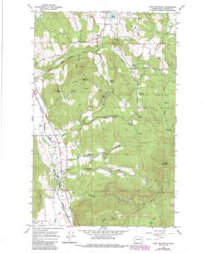 Addy Mountain USGS topographic map 48117d7