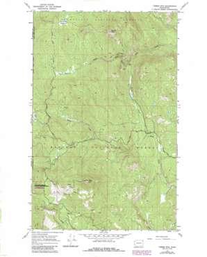 Timber Mountain topo map