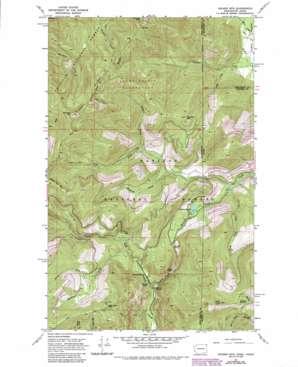 Helmer Mountain topo map