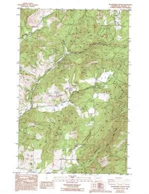 Blackhorse Canyon topo map