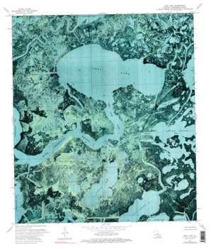 Lake Mechant USGS topographic map 29091c1