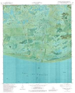 Mulberry Island East USGS topographic map 29092e3