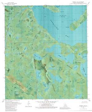 Fearman Lake topo map