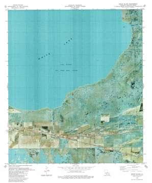 Pecan Island USGS topographic map 29092f4