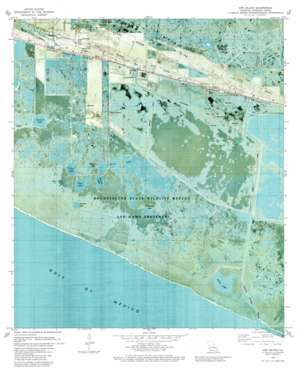 Cow Island USGS topographic map 29092f7