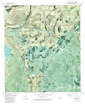 Forked Island USGS topographic map 29092g3