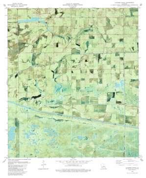 Latanier Bayou USGS topographic map 29092h5