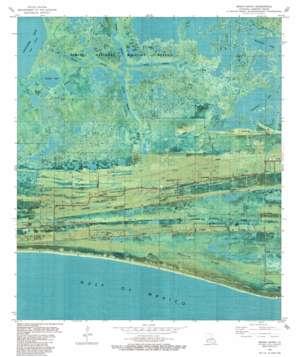 Grand Bayou topo map