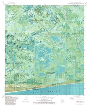 Peveto Beach USGS topographic map 29093g5