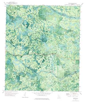 Pineland topo map