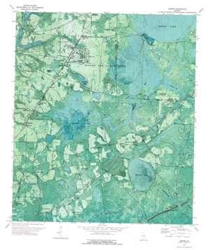 Bemiss topo map