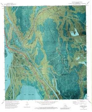Jackass Bay topo map