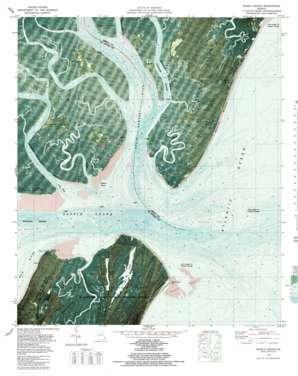Sapelo Sound topo map