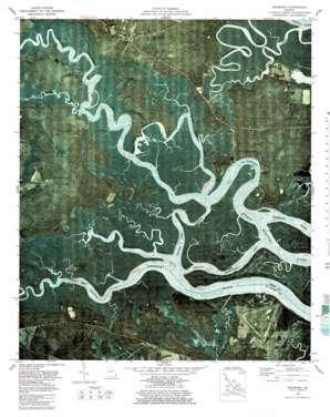 Seabrook topo map