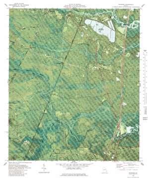 Riceboro topo map
