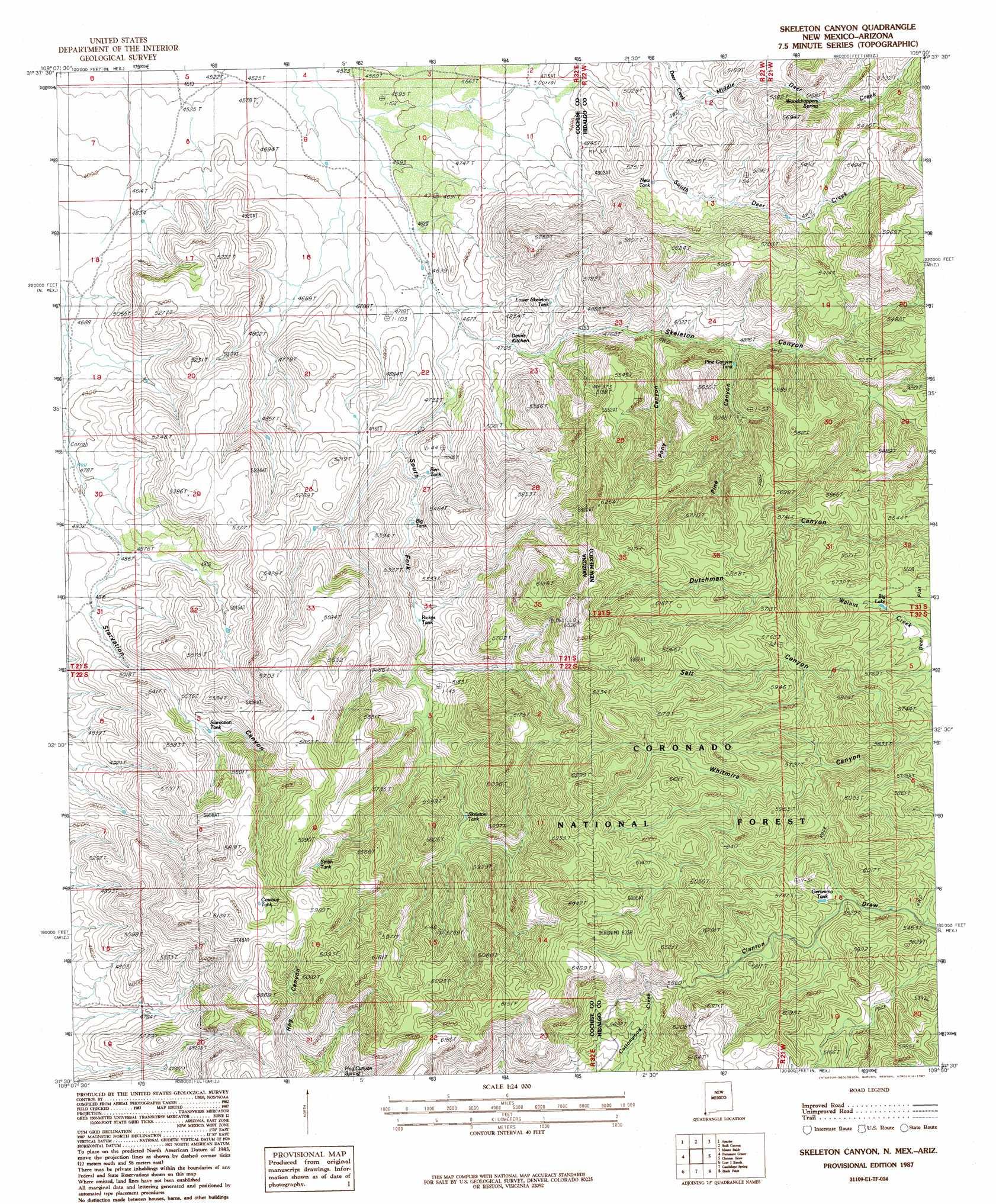 Skeleton Canyon topographic map AZ NM USGS Topo Quad 31109e1