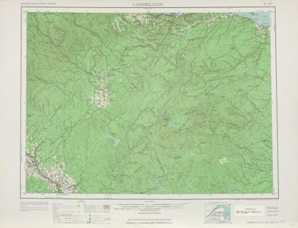 Campbellton topographical map